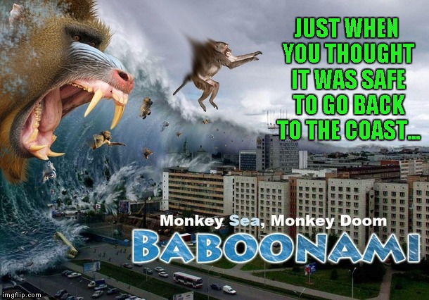 And you thought Sharknado's were your only problem...think again. | JUST WHEN YOU THOUGHT IT WAS SAFE TO GO BACK TO THE COAST... | image tagged in baboonami,memes,funny,baboons,funny animals,animals | made w/ Imgflip meme maker