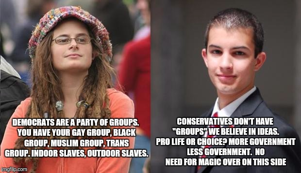 Liberal vs Conservative | DEMOCRATS ARE A PARTY OF GROUPS. YOU HAVE YOUR GAY GROUP, BLACK GROUP, MUSLIM GROUP, TRANS GROUP. INDOOR SLAVES, OUTDOOR SLAVES. CONSERVATIV | image tagged in liberal vs conservative | made w/ Imgflip meme maker