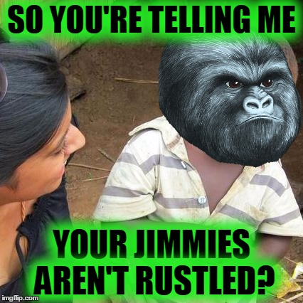 Third World Skeptical Kid Meme | SO YOU'RE TELLING ME YOUR JIMMIES AREN'T RUSTLED? | image tagged in memes,third world skeptical kid,rustle my jimmies,gorilla,funny | made w/ Imgflip meme maker