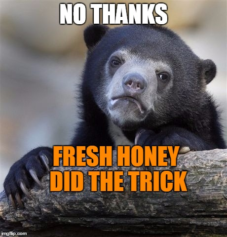 Confession Bear Meme | NO THANKS FRESH HONEY DID THE TRICK | image tagged in memes,confession bear | made w/ Imgflip meme maker