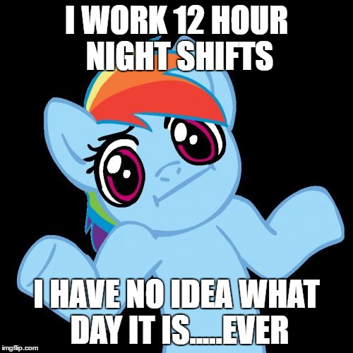 Pony Shrugs | I WORK 12 HOUR NIGHT SHIFTS I HAVE NO IDEA WHAT DAY IT IS.....EVER | image tagged in memes,pony shrugs | made w/ Imgflip meme maker