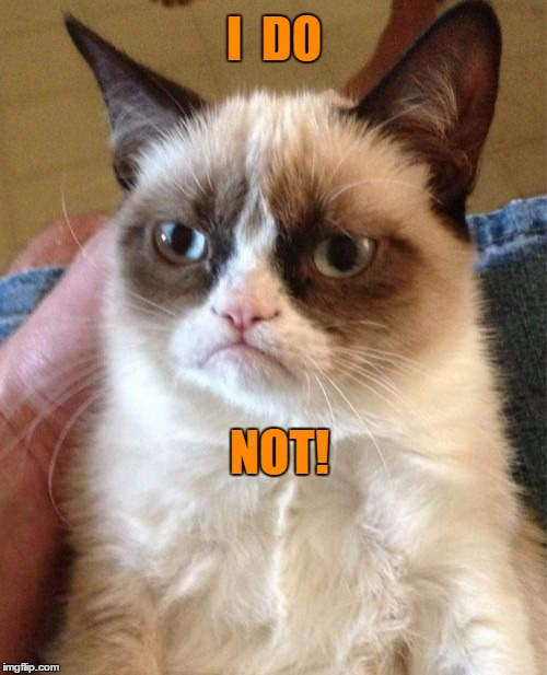 Grumpy Cat Meme | I  DO NOT! | image tagged in memes,grumpy cat | made w/ Imgflip meme maker