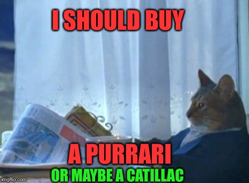 I should buy a car cat |  I SHOULD BUY; A PURRARI; OR MAYBE A CATILLAC | image tagged in memes,i should buy a boat cat,funny,ferrari,cars | made w/ Imgflip meme maker