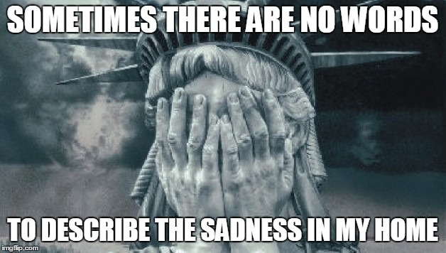 Statue of Liberty Crying | SOMETIMES THERE ARE NO WORDS TO DESCRIBE THE SADNESS IN MY HOME | image tagged in statue of liberty crying | made w/ Imgflip meme maker