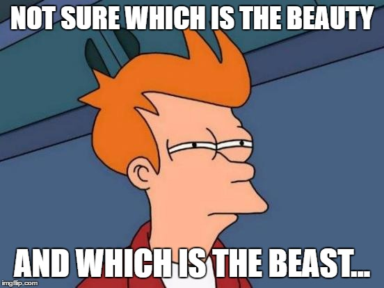 Futurama Fry Meme | NOT SURE WHICH IS THE BEAUTY AND WHICH IS THE BEAST... | image tagged in memes,futurama fry | made w/ Imgflip meme maker