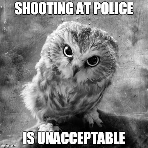 SHOOTING AT POLICE IS UNACCEPTABLE | made w/ Imgflip meme maker