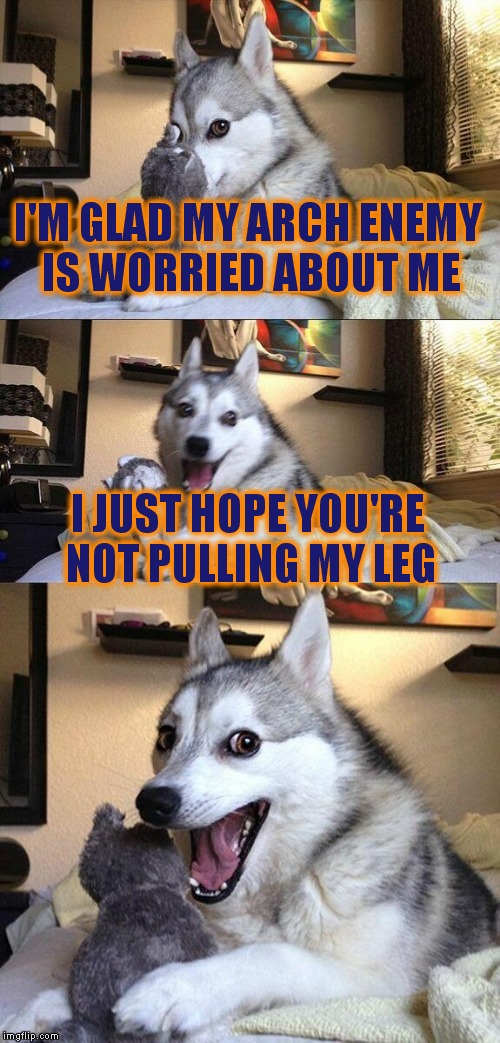 Bad Pun Dog Meme | I'M GLAD MY ARCH ENEMY IS WORRIED ABOUT ME I JUST HOPE YOU'RE NOT PULLING MY LEG | image tagged in memes,bad pun dog | made w/ Imgflip meme maker