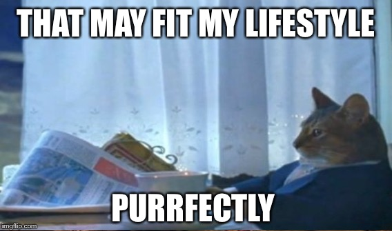 THAT MAY FIT MY LIFESTYLE PURRFECTLY | made w/ Imgflip meme maker