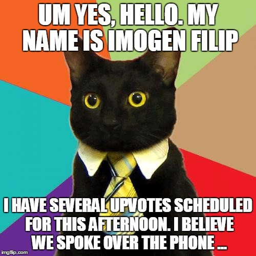 Imogen Filip | UM YES, HELLO. MY NAME IS IMOGEN FILIP I HAVE SEVERAL UPVOTES SCHEDULED FOR THIS AFTERNOON. I BELIEVE WE SPOKE OVER THE PHONE ... | image tagged in memes,business cat | made w/ Imgflip meme maker