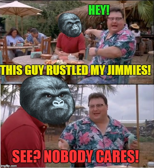 See Nobody Cares Meme | HEY! THIS GUY RUSTLED MY JIMMIES! SEE? NOBODY CARES! | image tagged in memes,see nobody cares,rustle my jimmies,gorilla,funny | made w/ Imgflip meme maker