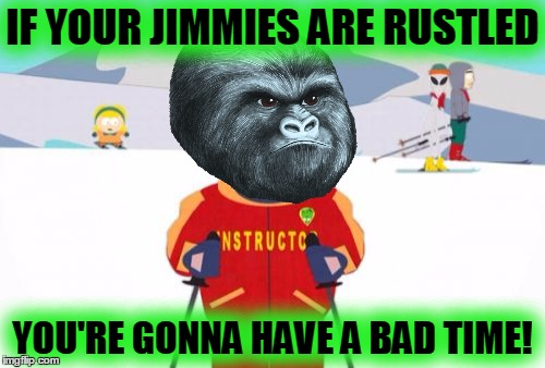 Super Cool Ski Instructor |  IF YOUR JIMMIES ARE RUSTLED; YOU'RE GONNA HAVE A BAD TIME! | image tagged in memes,super cool ski instructor,rustle my jimmies,gorilla,funny | made w/ Imgflip meme maker