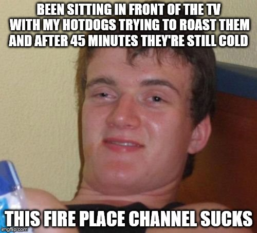 10 Guy Meme | BEEN SITTING IN FRONT OF THE TV WITH MY HOTDOGS TRYING TO ROAST THEM AND AFTER 45 MINUTES THEY'RE STILL COLD THIS FIRE PLACE CHANNEL SUCKS | image tagged in memes,10 guy | made w/ Imgflip meme maker