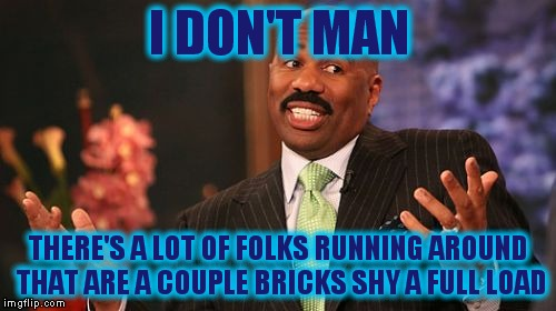 Steve Harvey Meme | I DON'T MAN THERE'S A LOT OF FOLKS RUNNING AROUND THAT ARE A COUPLE BRICKS SHY A FULL LOAD | image tagged in memes,steve harvey | made w/ Imgflip meme maker