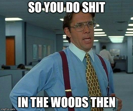 That Would Be Great Meme | SO YOU DO SHIT IN THE WOODS THEN | image tagged in memes,that would be great | made w/ Imgflip meme maker