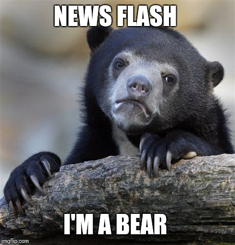 Confession Bear Meme | NEWS FLASH I'M A BEAR | image tagged in memes,confession bear | made w/ Imgflip meme maker