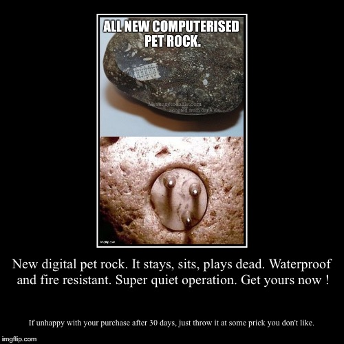 New digital pet rock. It stays, sits, plays dead. Waterproof and fire resistant. Super quiet operation. Get yours now ! | If unhappy with yo | image tagged in funny,demotivationals | made w/ Imgflip demotivational maker