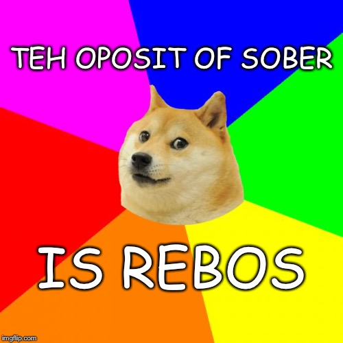 Lisen op kidz | TEH OPOSIT OF SOBER IS REBOS | image tagged in memes,advice doge | made w/ Imgflip meme maker