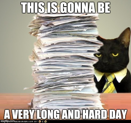 Business Cat Meme Blank
