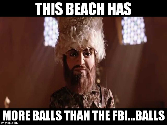 THIS BEACH HAS MORE BALLS THAN THE FBI...BALLS | made w/ Imgflip meme maker