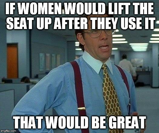 That Would Be Great Meme | IF WOMEN WOULD LIFT THE SEAT UP AFTER THEY USE IT THAT WOULD BE GREAT | image tagged in memes,that would be great | made w/ Imgflip meme maker