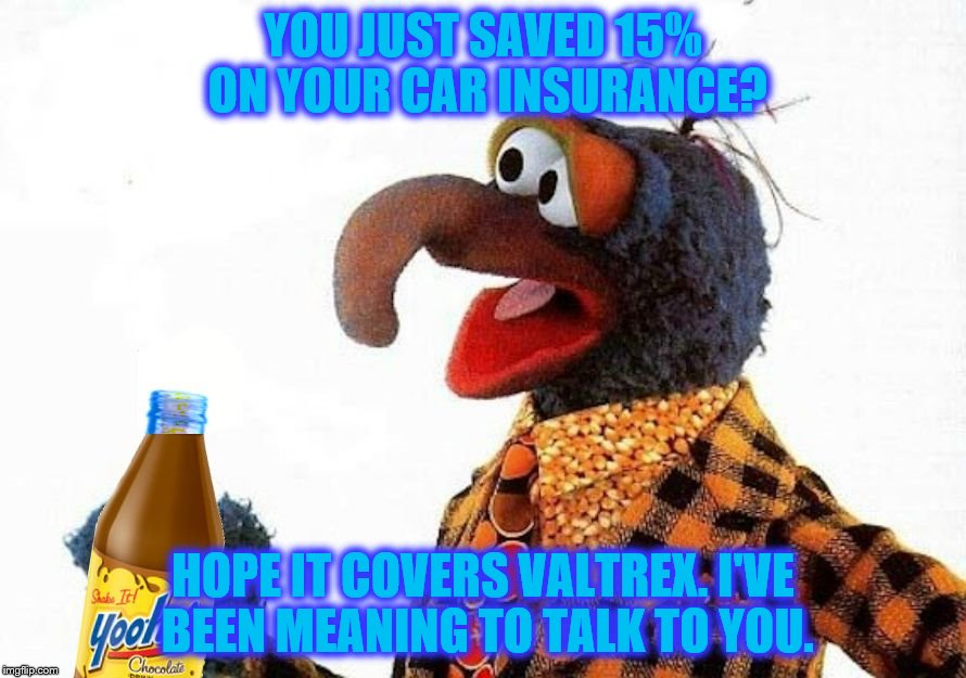 Gonzo Jeter | YOU JUST SAVED 15% ON YOUR CAR INSURANCE? HOPE IT COVERS VALTREX. I'VE BEEN MEANING TO TALK TO YOU. | image tagged in gonzo,muppets,insurance,herpes,std,funny memes | made w/ Imgflip meme maker
