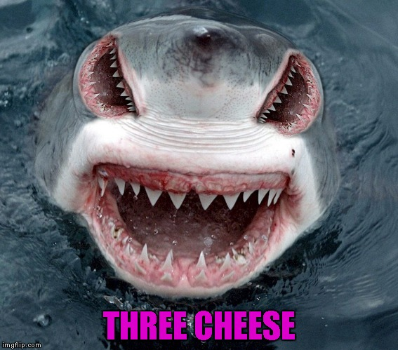 THREE CHEESE | made w/ Imgflip meme maker