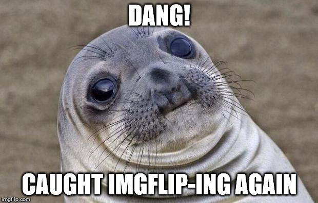 Awkward Moment Sealion Meme | DANG! CAUGHT IMGFLIP-ING AGAIN | image tagged in memes,awkward moment sealion | made w/ Imgflip meme maker