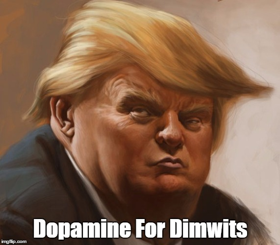Dopamine For Dimwits | made w/ Imgflip meme maker