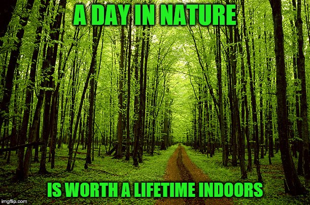 A Day in Nature |  A DAY IN NATURE; IS WORTH A LIFETIME INDOORS | image tagged in trees_oxygen,nature,a day,worth,lifetime,indoors | made w/ Imgflip meme maker