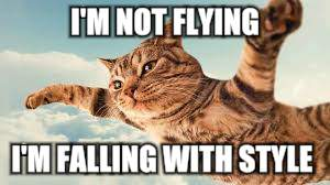 I'M NOT FLYING I'M FALLING WITH STYLE | made w/ Imgflip meme maker