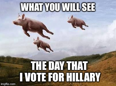 Not gonna happen.  Wouldn't be prudent! | WHAT YOU WILL SEE THE DAY THAT I VOTE FOR HILLARY | image tagged in pigs fly,hillary,election 2016,scandal | made w/ Imgflip meme maker