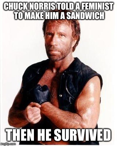 CHUCK NORRIS TOLD A FEMINIST TO MAKE HIM A SANDWICH THEN HE SURVIVED | made w/ Imgflip meme maker