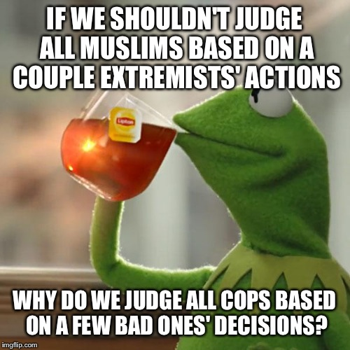But Thats None Of My Business Meme | IF WE SHOULDN'T JUDGE ALL MUSLIMS BASED ON A COUPLE EXTREMISTS' ACTIONS WHY DO WE JUDGE ALL COPS BASED ON A FEW BAD ONES' DECISIONS? | image tagged in memes,but thats none of my business,kermit the frog | made w/ Imgflip meme maker