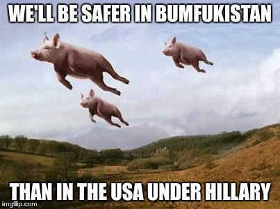 WE'LL BE SAFER IN BUMFUKISTAN THAN IN THE USA UNDER HILLARY | made w/ Imgflip meme maker