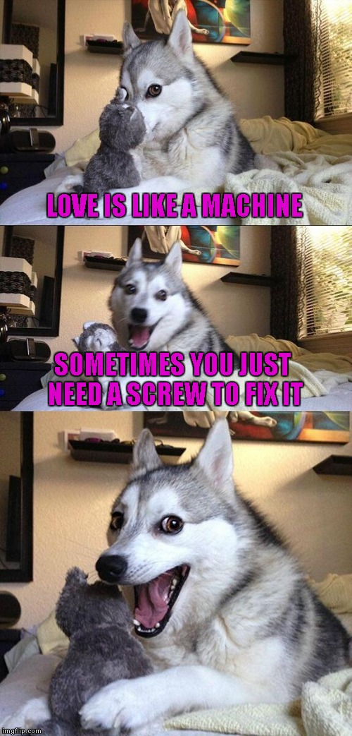Bad Pun Dog Meme | LOVE IS LIKE A MACHINE SOMETIMES YOU JUST NEED A SCREW TO FIX IT | image tagged in memes,bad pun dog | made w/ Imgflip meme maker