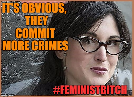 feminist Zeisler | IT'S OBVIOUS,  THEY COMMIT MORE CRIMES #FEMINISTB**CH | image tagged in feminist zeisler | made w/ Imgflip meme maker