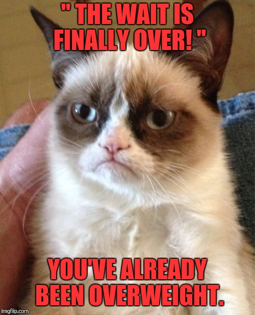 "Grumpy cat ftw |  "" THE WAIT IS FINALLY OVER! ""; YOU'VE ALREADY BEEN OVERWEIGHT. 