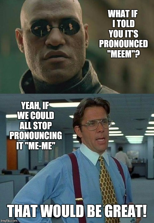 "It's pronounced ""MEEM""! 