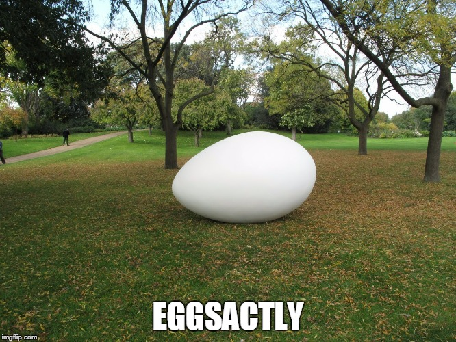 EGGSACTLY | made w/ Imgflip meme maker