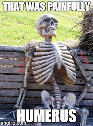 Waiting Skeleton Meme | THAT WAS PAINFULLY HUMERUS | image tagged in memes,waiting skeleton | made w/ Imgflip meme maker