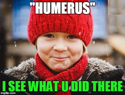 "smirk | ""HUMERUS"" I SEE WHAT U DID THERE 
