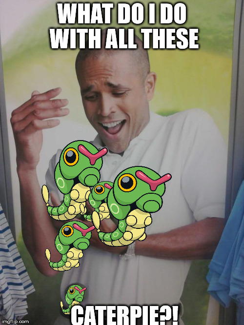 Pokemon GO problems |  WHAT DO I DO WITH ALL THESE; CATERPIE?! | image tagged in why can't i hold all these limes,pokemon go,caterpie | made w/ Imgflip meme maker