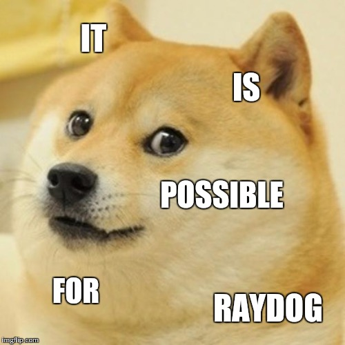 Doge Meme | IT IS POSSIBLE FOR RAYDOG | image tagged in memes,doge | made w/ Imgflip meme maker