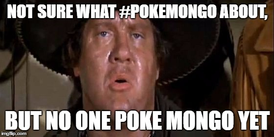 Spacing is important |  NOT SURE WHAT #POKEMONGO ABOUT, BUT NO ONE POKE MONGO YET | image tagged in pokemon,pokemon go,pokemongo,poke mongo,blazing saddles,alex karras | made w/ Imgflip meme maker