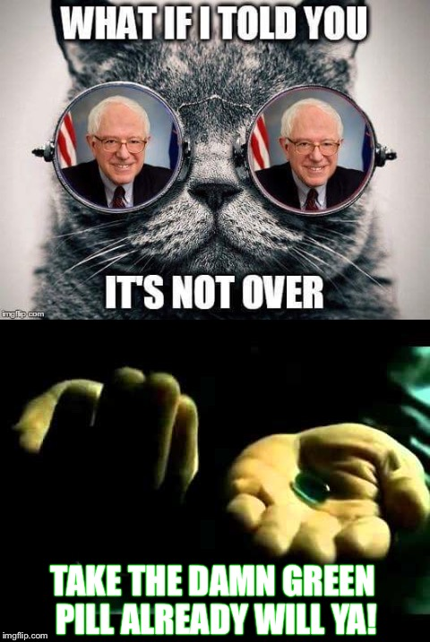 Not Over |  TAKE THE DAMN GREEN PILL ALREADY WILL YA! | image tagged in morpheus,bernie sanders,green party,jill stein,pill,matrix | made w/ Imgflip meme maker