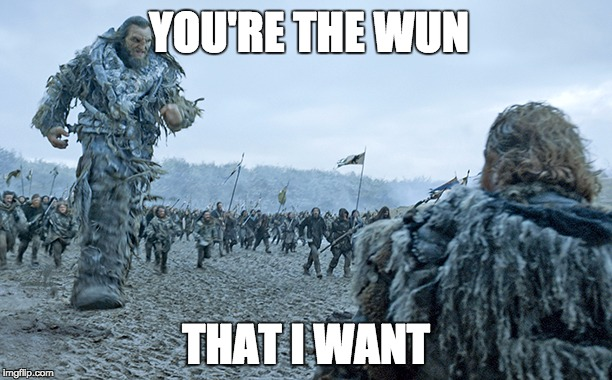 The wun that I want |  YOU'RE THE WUN; THAT I WANT | image tagged in bad puns,game of thrones,wun wun | made w/ Imgflip meme maker