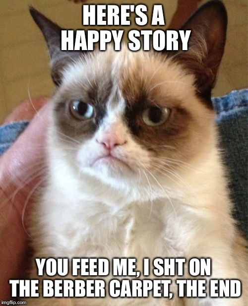 Grumpy Cat Meme | HERE'S A HAPPY STORY YOU FEED ME, I SHT ON THE BERBER CARPET, THE END | image tagged in memes,grumpy cat | made w/ Imgflip meme maker