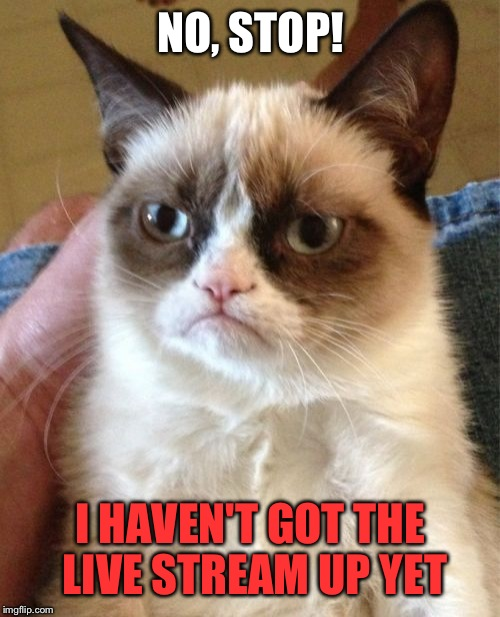 Grumpy Cat Meme | NO, STOP! I HAVEN'T GOT THE LIVE STREAM UP YET | image tagged in memes,grumpy cat | made w/ Imgflip meme maker