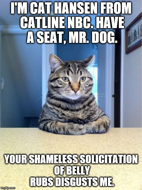 Take A Seat Cat | I'M CAT HANSEN FROM CATLINE NBC. HAVE A SEAT, MR. DOG. YOUR SHAMELESS SOLICITATION OF BELLY RUBS DISGUSTS ME. | image tagged in memes,chris hansen,cat,dog | made w/ Imgflip meme maker