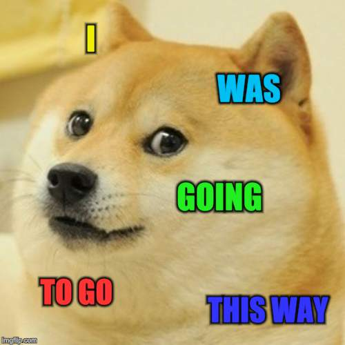 Doge Meme | I WAS GOING TO GO THIS WAY | image tagged in memes,doge | made w/ Imgflip meme maker